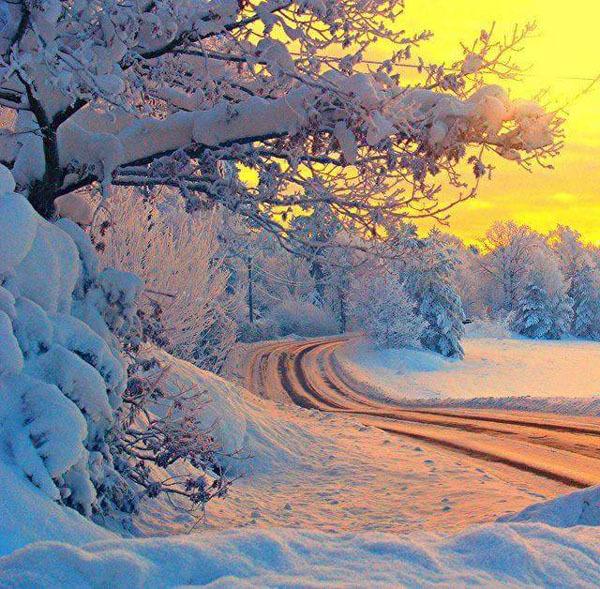 Urime Krishtëlindjet dhe Vitin e ri 2016 KkFf_n7Eoh7L459eZ4s7hRFGZeh89WpoNWCwgWxrBynRFkYxbODLrQ==