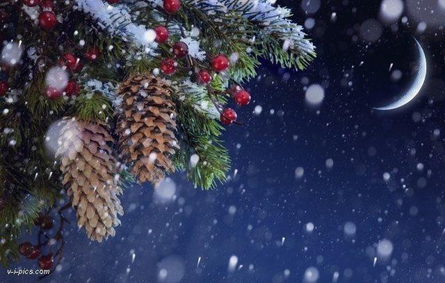Dita e dimrit dhe dimri! IaFC3KrHb6IQp4dbY_kE0rJrujoYdu7ZbVCxLkGkMmp1RMWXjlwswQ==